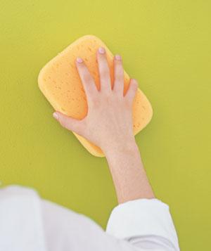 Sponge Hand Wall
