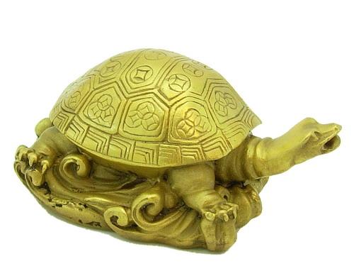 Vastu Shastra Tortoise Position