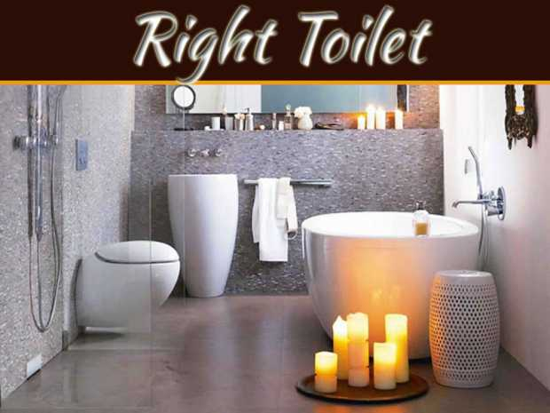 Choosing The Right Toilet
