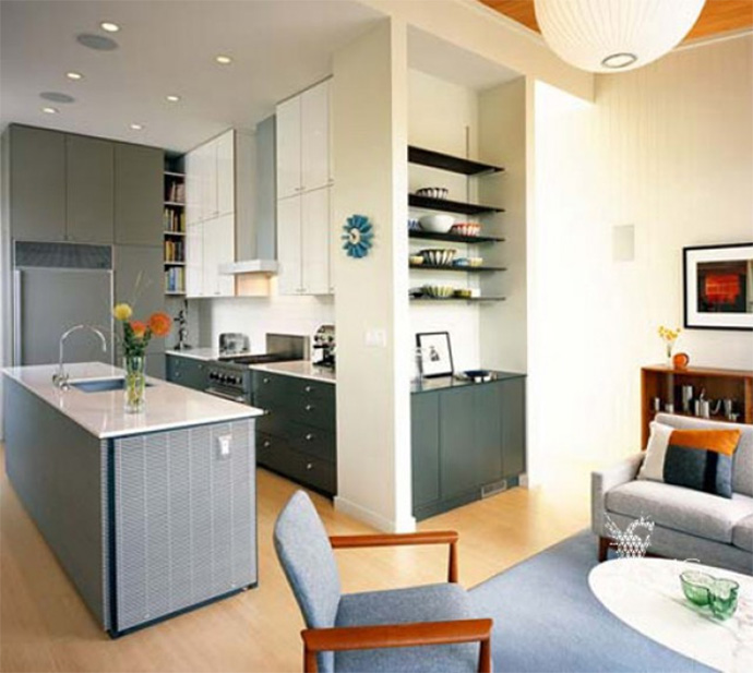 Kitchen Living Room Design Ideas