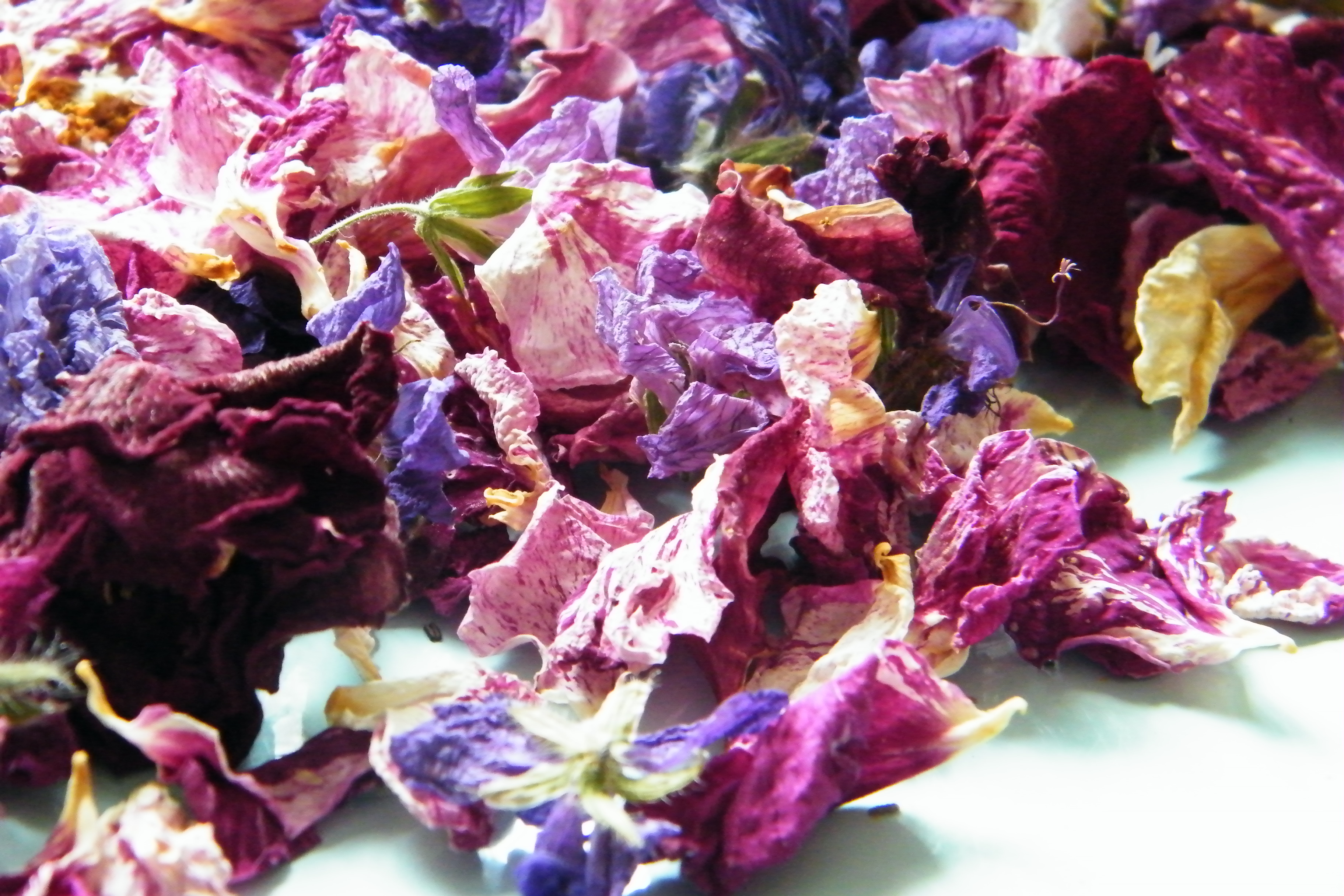 Dried natural flowers