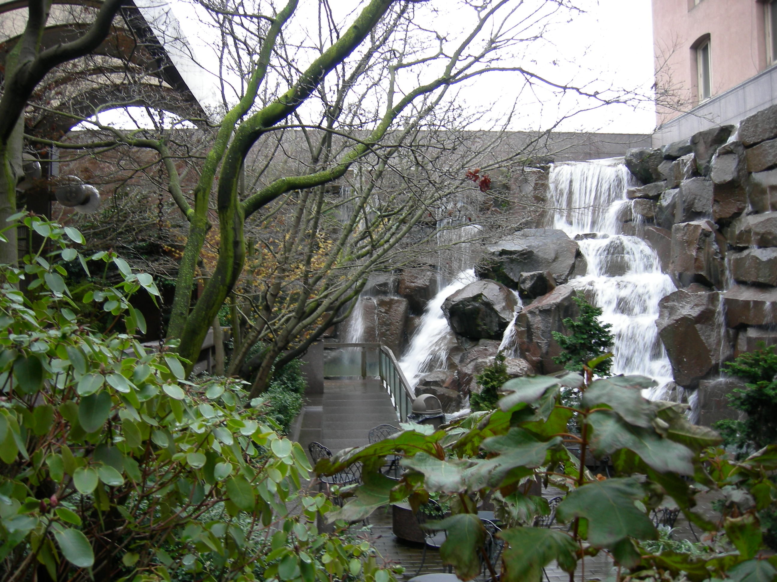 Seattle Waterfall Garden