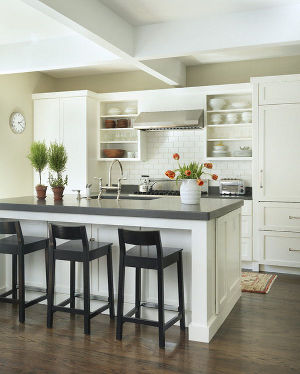Traditional-Kitchen-with-Small-Plants-and-Flower-on-Honed-Caesarstone-Raven-Color-Kitchen-Island