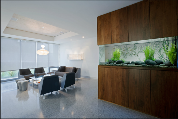 Modern Office With Fengshui Aquarium