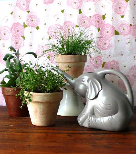 terracotta garden pots decor