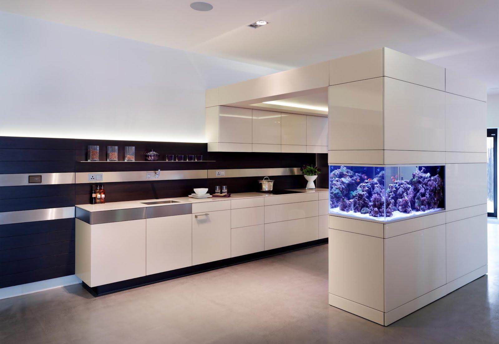 Aquarium in Kitchen