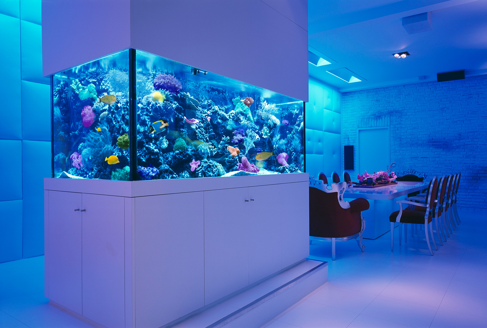 Fish aquarium is good in home - Room Decorating Ideas With Aquarium