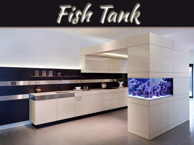 Why Place Fish Tank In Wealth And Abundance Area?