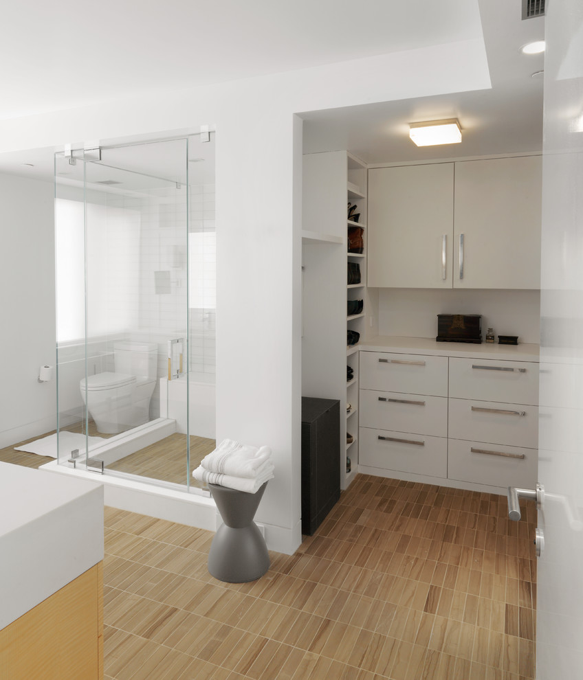 Modern Bathroom Closet
