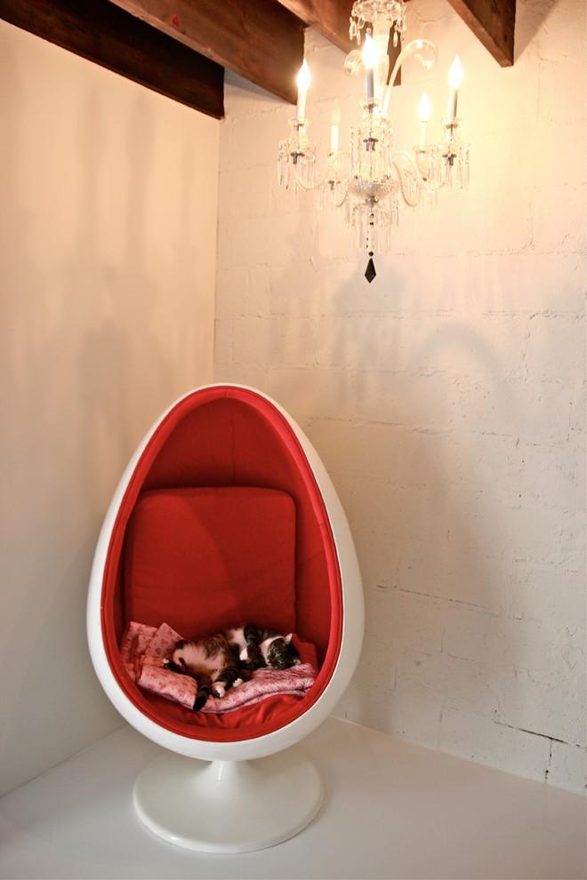 Modern Kitty Rubs