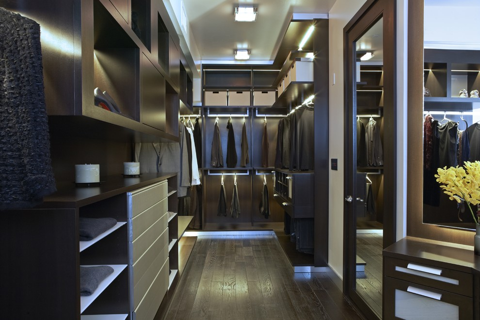 Recessed Wall in Contemporary Closet