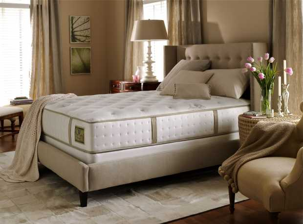 Clean And Fresh Mattress