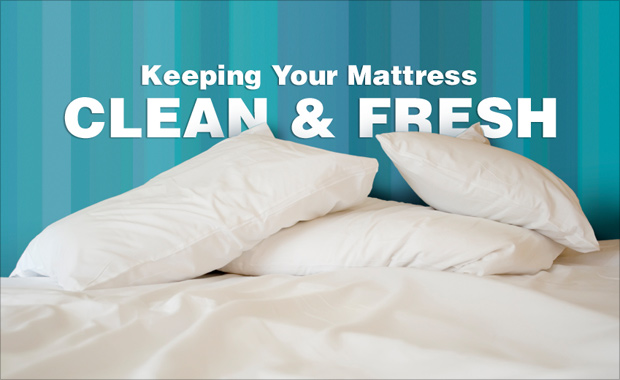 Steps to Clean a Mattress Part 1