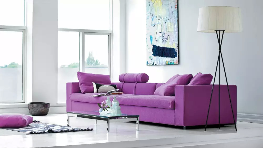Ultramodern Living Room Decor Uncluttered