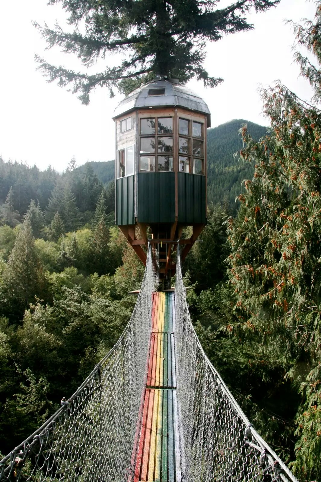 Have a look on top stunning tree house around the globe for Cedar creek