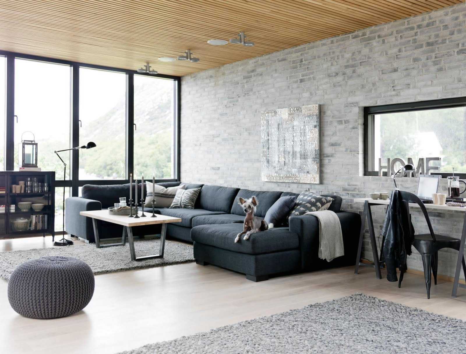Industrial interior design living room