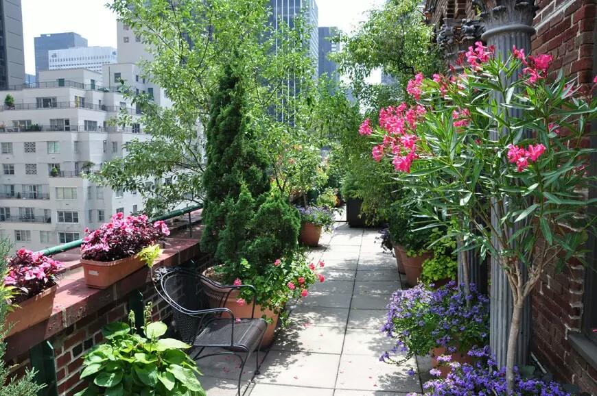 Rooftop Terrace Garden New York City