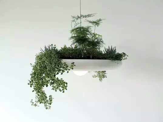 flower plant hanging lamp pot~01