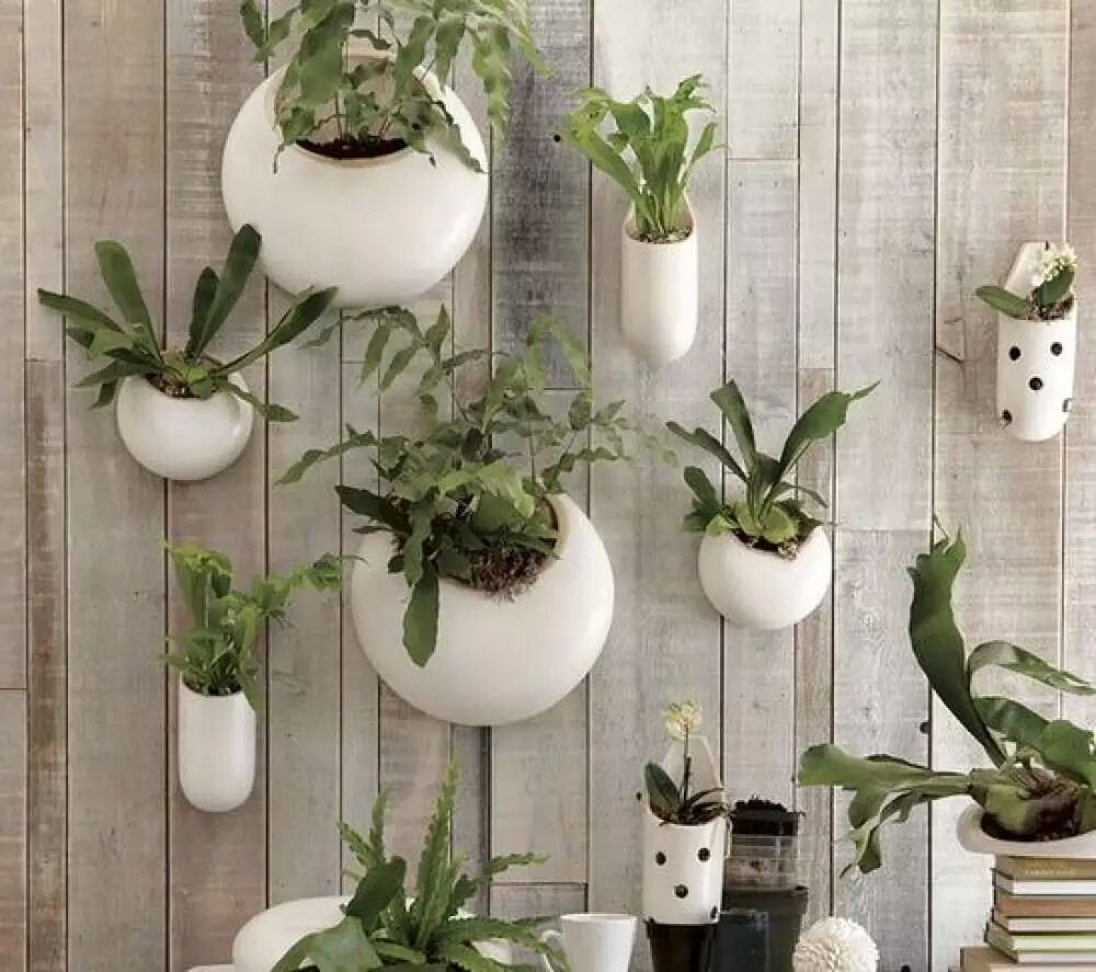 Decorative Flair with a Plant Wall