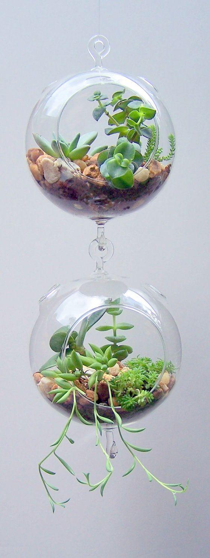 Hanging Succulent Glass Pots