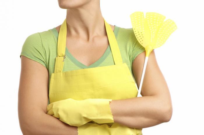 Home Remedies for Fruit Flies Indoor