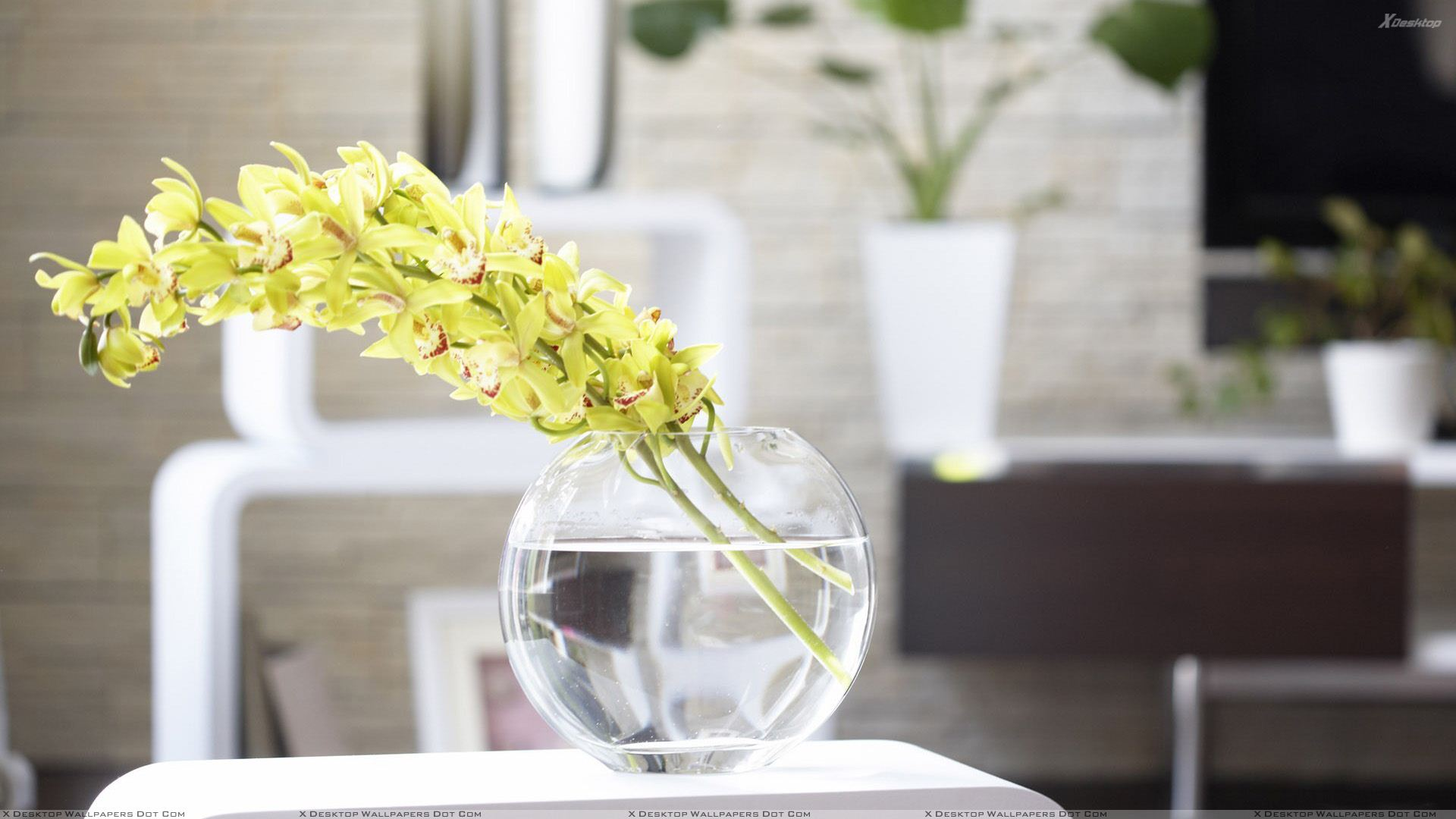 Oriental Floral Display Modern Living