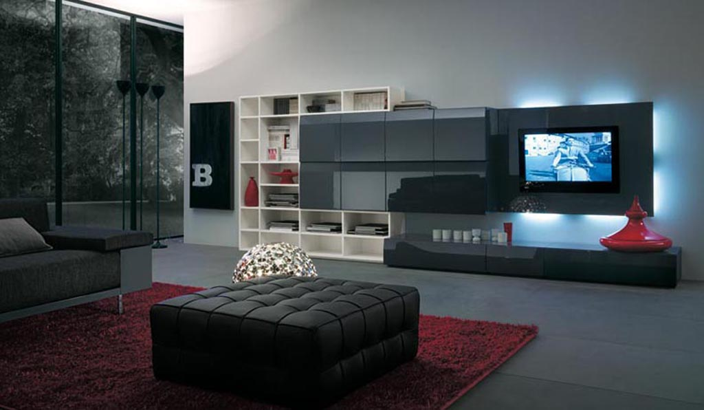 High-End Entertainment Room