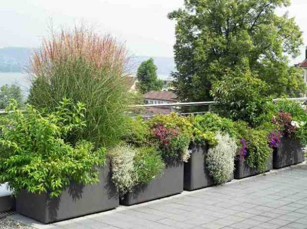 Vastu Shastra Pots and Planters