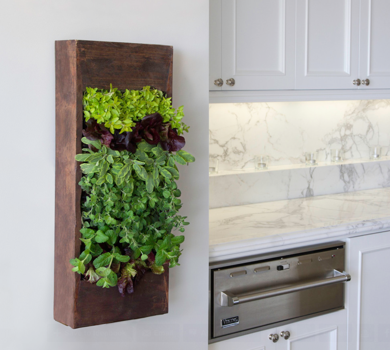 Modern indoor Salad Garden in Kitchen Balcony