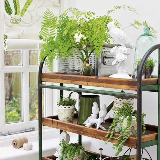 conservatory-shelves