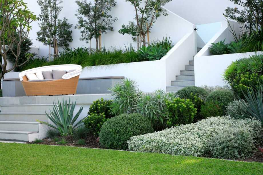 elegant modern garden