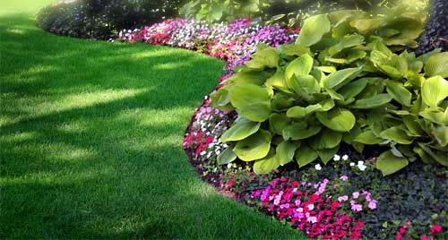 fresh garden maintenance