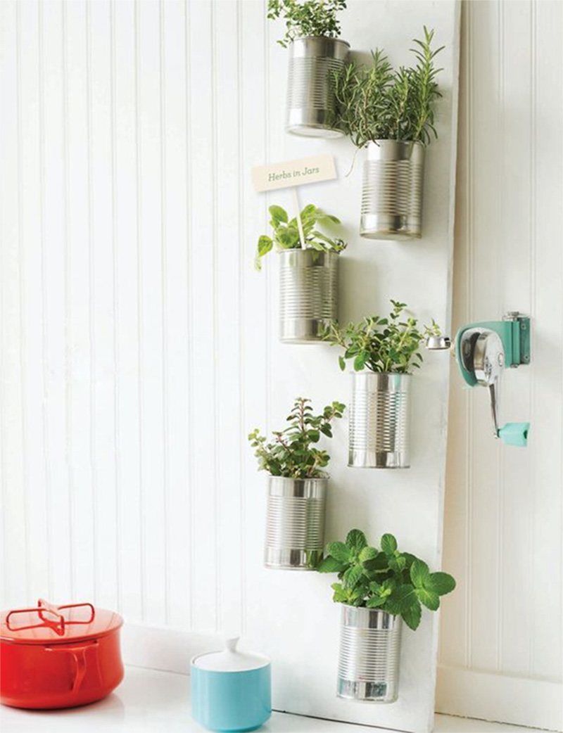 indoor salad garden in jar