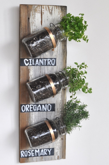 wall herbs garden indoor container garden