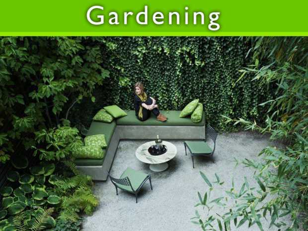 Designs for Urban Gardens featured Thumb
