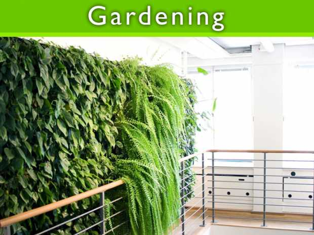 Top 7 ideas for Modern gardens featured Thumb