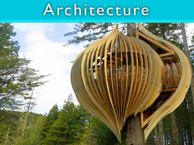 Yellow Treehouse Restaurant of New Zealand featured Thumb