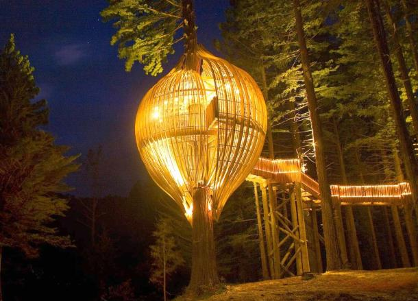 Yellow Treehouse Restaurant of New Zealand Night View