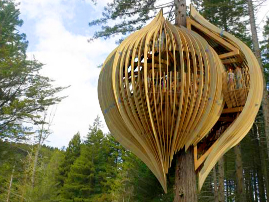 Yellow Treehouse Restaurant of New Zealand