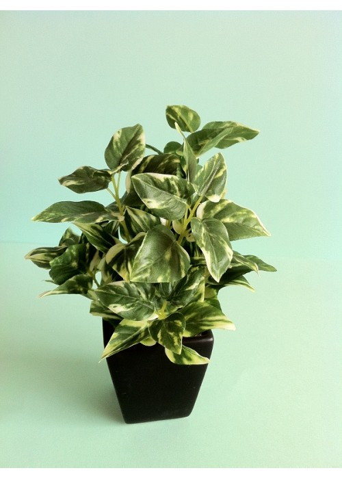 artificial-pothos-plant-mini