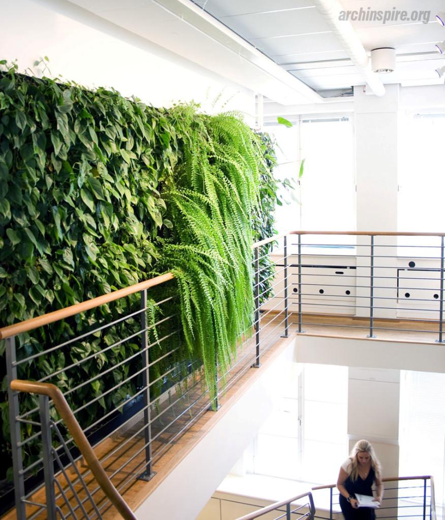 Modern Indoor Garden Ideas