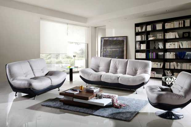 Contemporary Living Room With A Variety Of Indoor Furniture