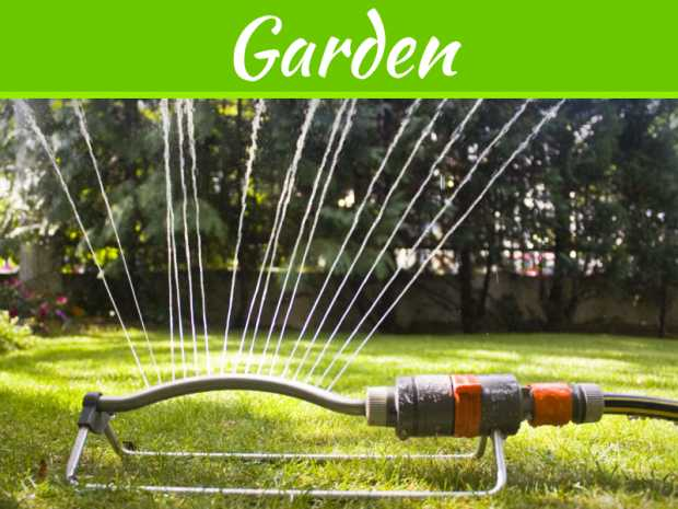 Looking Forward To A Beautiful Spring Lawn And Garden?