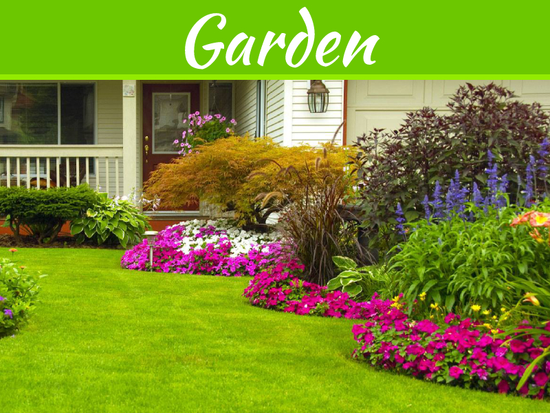 Spring Tips for an Immaculate Lawn and Garden