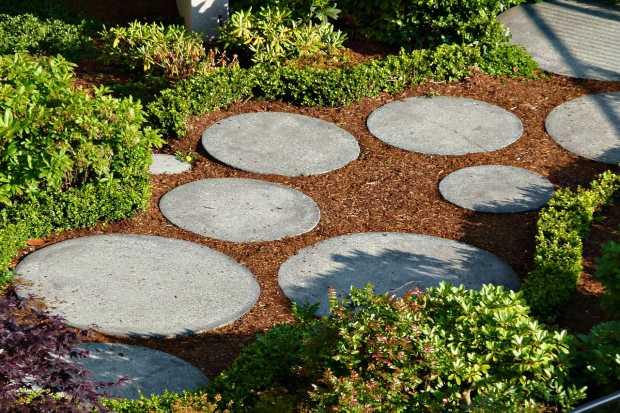 garden-54366_1280