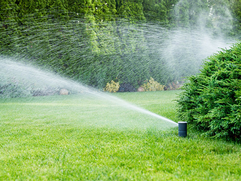 Scare The Pests Off With Decorations, Like Sprinklers