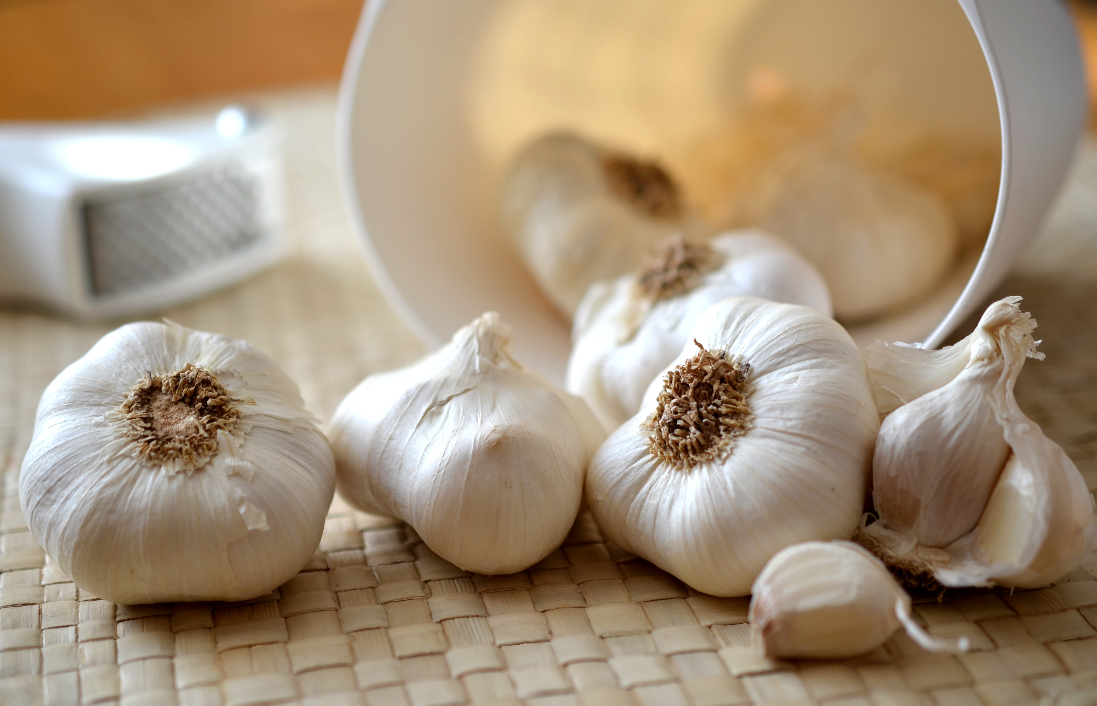 Experiment With Garlic