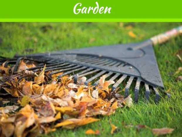 5 Ways to Prepare your Lawn for Winter