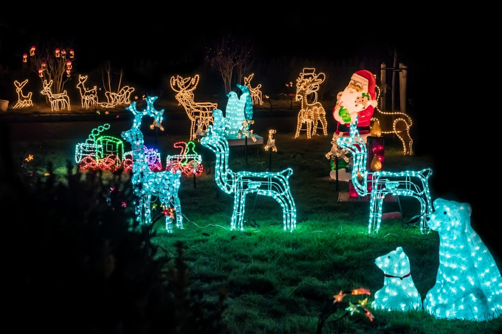 Christmas Lights in the Outdoor Space