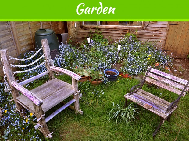 what-to-grow-in-your-small-on-the-porch-garden
